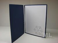 091223-simple-snowflake-ins