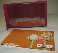 100525-clear-envelope-album