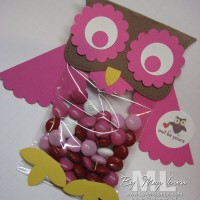 Whooo Loves You? Cello Bag Topper Valentine Owls