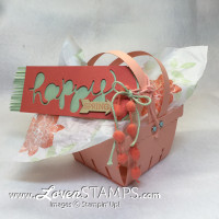 Hello You Tag on a 2 handled Berry Basket Die - complete with video tutorial for Stamps in the Mail Club at LovenStamps