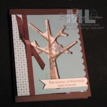 Season of Friendship Shaker Card