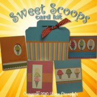 "Sweet Scoops ""Camp Keep It ALL"" or Kit ""To Go"""