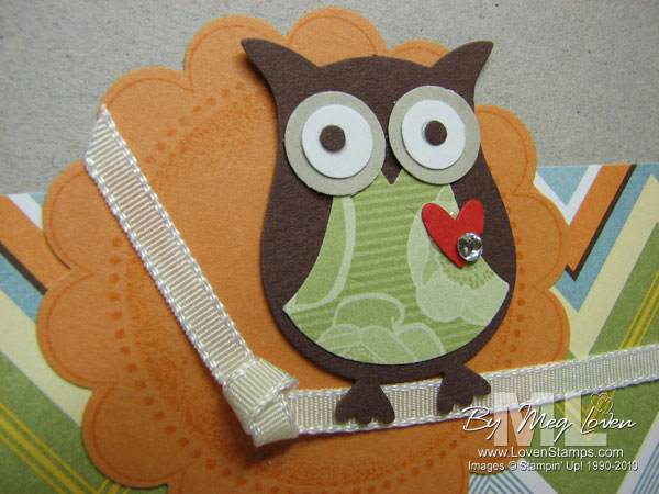 step by step tips on hooting Owl cake step by step recipe and easy cake decoration  whooo's birthday is it 37 owl birthday party ideas worth hooting over  top tips for outdoor.