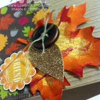 Autumn Accents Die – Featured for Big Shot