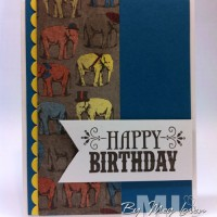 You're Amazing: The happy birthday elephant set