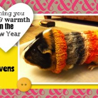 Warm Wishes for the New Year: Guinea Pig Sweaters