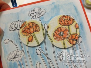 Pleasant Poppies Spotlighting Technique Tutorial