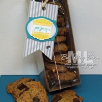 Gluten Free, Dairy Free, Soy Free Chocolate Chip Cookies (in a cute gift box)