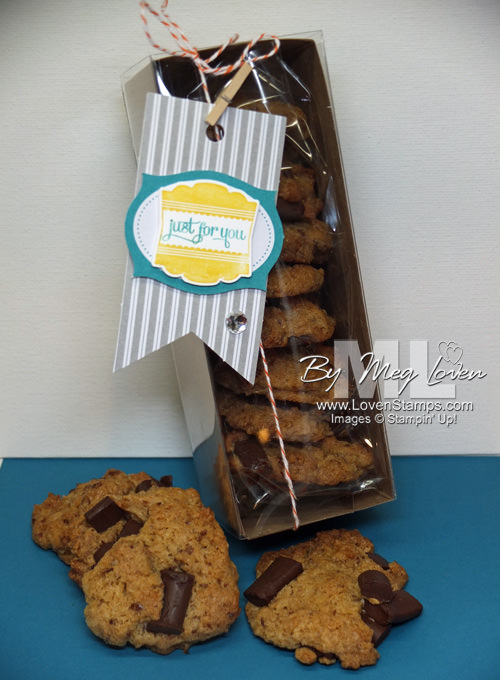 Gluten Free, Dairy Free, Soy Free Chocolate Chip Cookies (in a cute Tag A Bag Gift Box)