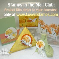 Stamps in the Mail Club: New Round sign-ups are now for Too Kind project kits