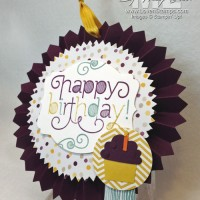 2 Uses for 1 Happy Birthday Project: Designer Rosettes