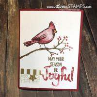 Joyful Season: Gotta Love A Cardinal