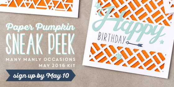 may 2016 sneak peek paper pumpkin manly masculine cards