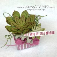 NEW! Oh So Succulent – March Stamps in the Mail Club Selection