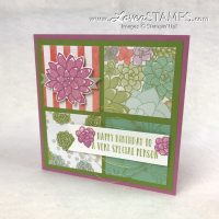 Four Square Technique: Oh So Succulent Sampler Card