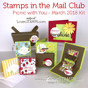 Stampin Up picnic with you project ideas