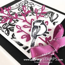 Simple Elegance with Petal Palette: Black and White Card Idea