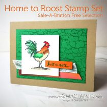 Home to Roost: Stampin Blends & the New Crackle Paint Background
