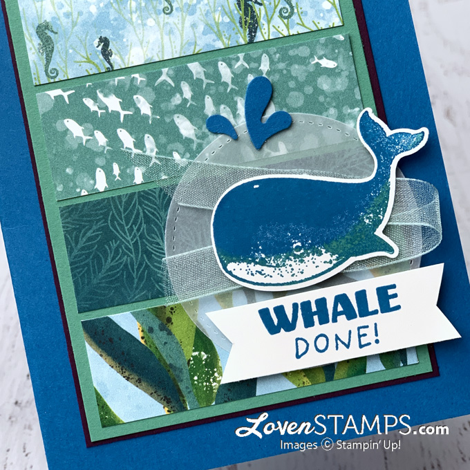 LovenStamps whale builder punch with stampin up whale done