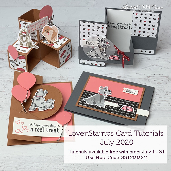 cards that move monthly tutorials lovenstamps with playful pets