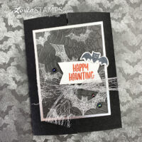 magic in this night dsp cobwebs 3D folder metallic ribbon iridescent pearls lovenstamps stampin up