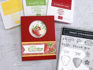sweet strawberry spinner card circle punch window stamp set