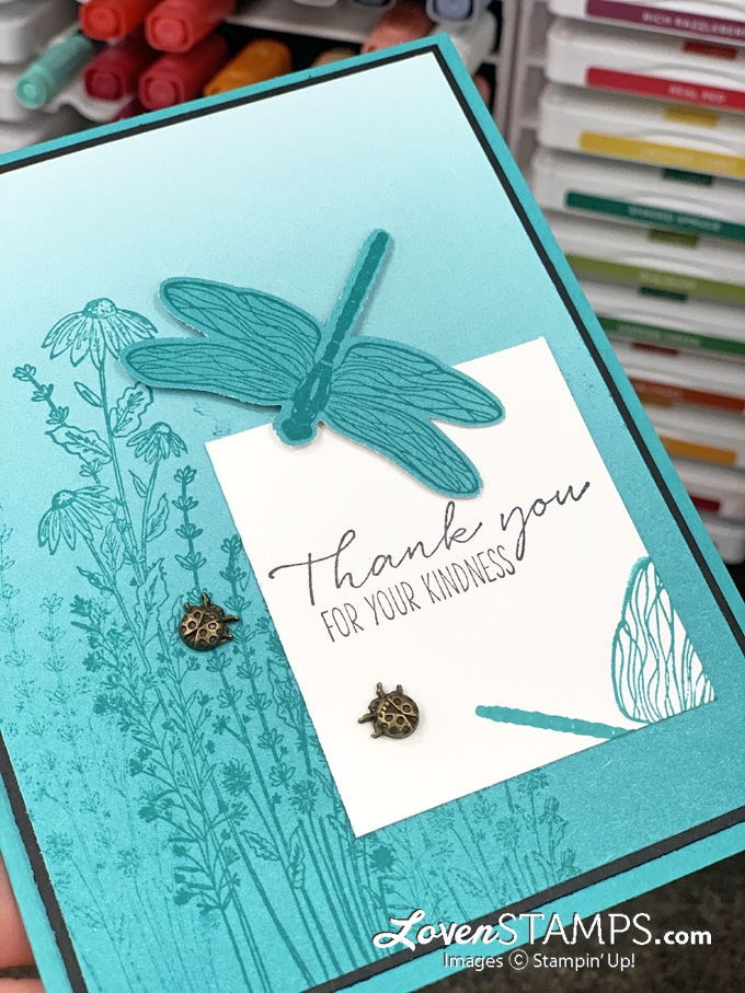 dragonfly punch greeting card thank you oh so ombre designer series paper bermuda bay