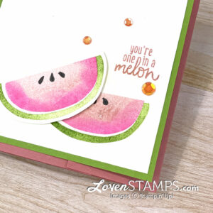 In Episode 90 I showed you this Blending Brush Technique for 'leveling up' your stamped images. And in Episode 91 I introduced the Hidden Buckle Trifold Card. Today's project combines both projects for a sweet Cute Fruit card that you'll love. This simple stamping set will inspire you to stamp a card to share with a special friend.