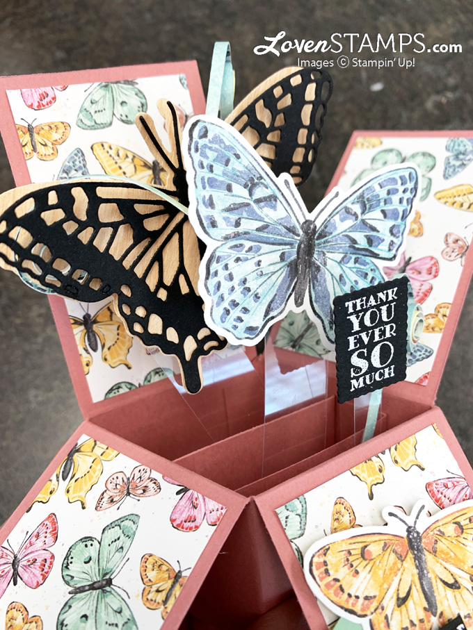 pop-up-box-card-butterfly-brilliance-wings-dies-bijou-dsp-video-tutorial-panels