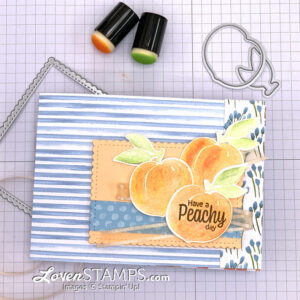 youre-sweet-as-a-peach-suite-stamps-dies-dsp-stitched-rectangle-dsp-card-base-stampin-up-idea
